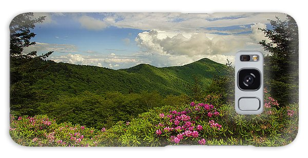 Rhododendrons On The Blue Ridge Parkway Galaxy Case