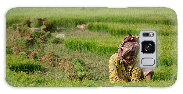 Rice Field Worker Harvests Rice In Green Field In Southeast Asia Galaxy Case
