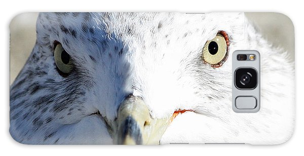 Ring Billed Gull Galaxy Case