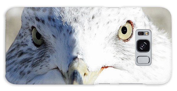 Ring Billed Gull Galaxy Case
