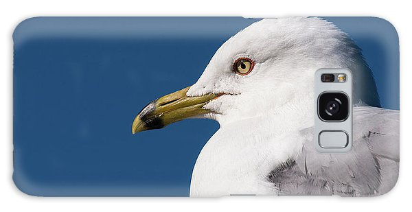 Galaxy Case featuring the photograph Ring-billed Gull Portrait by Onyonet  Photo Studios