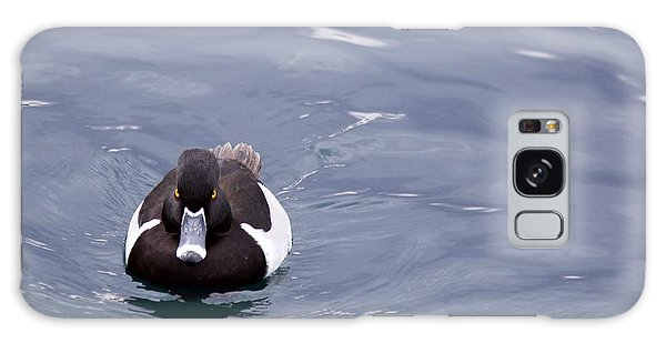 Ring-necked Duck Galaxy Case by Afrodita Ellerman