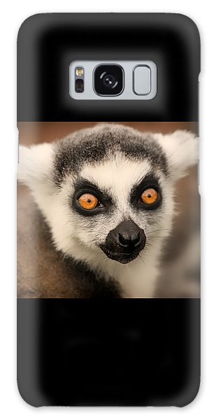 Ring Tailed Lemur Portrait Galaxy Case by Chris Boulton