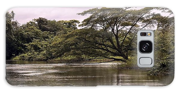 Riparian Rainforest Canopy Galaxy Case