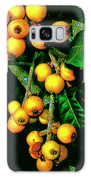 Ripe Loquats Galaxy Case