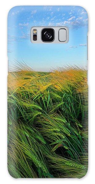 Ripening Barley Galaxy Case