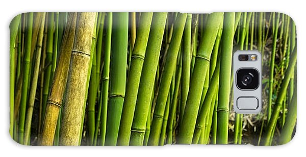 Road To Hana Bamboo Panorama - Maui Hawaii Galaxy Case