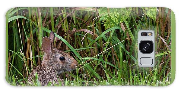 Roadside Rabbit Galaxy Case