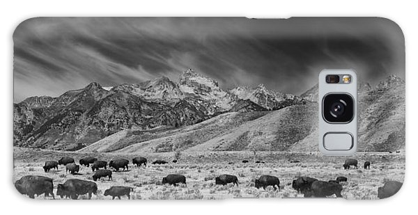 Roaming Bison In Black And White Galaxy Case
