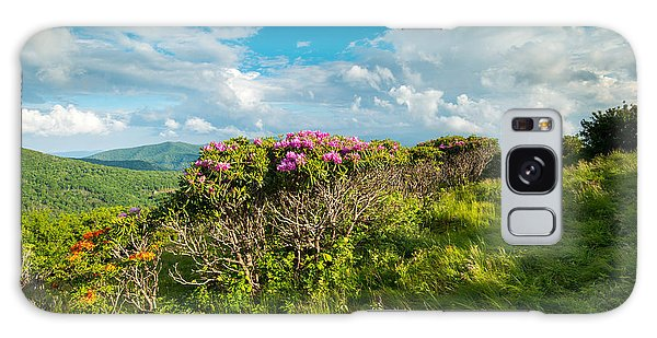 Roan Highlands Grassy Ridge Appalachian Trail Galaxy Case