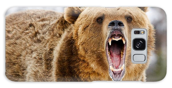 Roaring Grizzly Bear Galaxy Case
