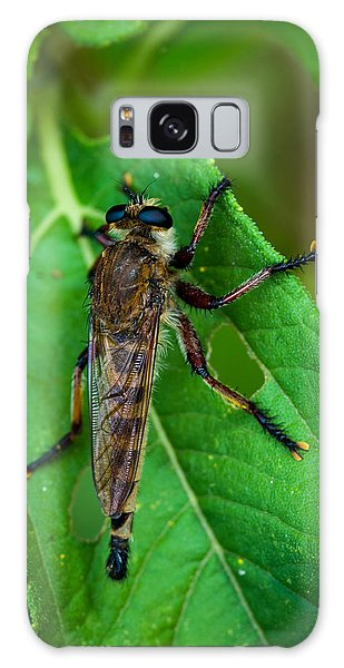 Robber Fly 1 Galaxy Case
