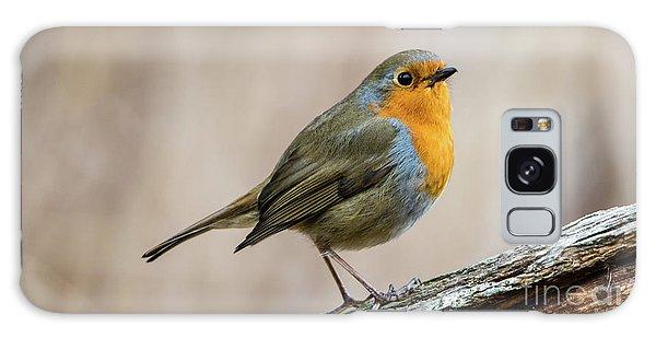 Robin In Spring Galaxy Case by Torbjorn Swenelius