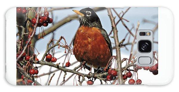 Robin In Winter Galaxy Case by Marcia Lee Jones