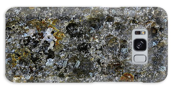 Rock Lichen Surface Galaxy Case