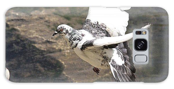 Rock Pigeon In Flight Galaxy Case