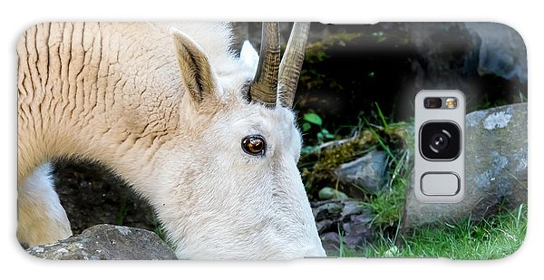 Rocky Mountain Goat Busy Eating Galaxy Case