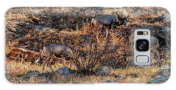 Rocky Mountain National Park Deer Colorado Galaxy Case