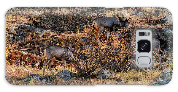 Rocky Mountain National Park Deer Colorado Galaxy Case