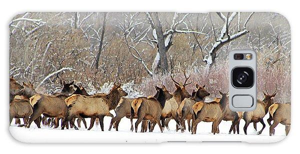 Rocky Mountain Winter Elk Galaxy Case