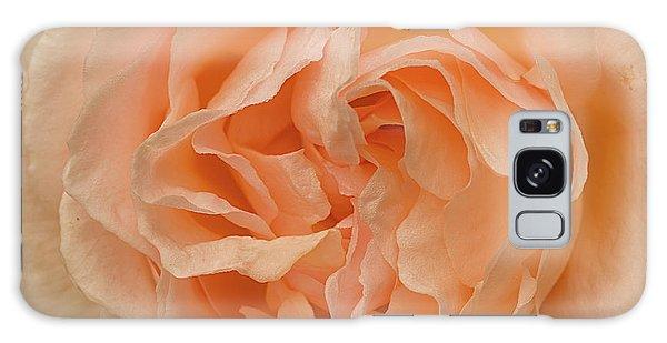 Romantic Rose Galaxy Case by Jacqi Elmslie