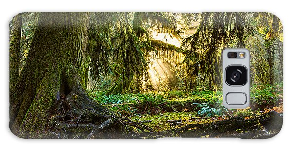 Olympic National Park Galaxy Case - Roots And Light by Jamie Pham