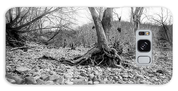 Galaxy Case featuring the photograph Roots And Stones by Alan Raasch