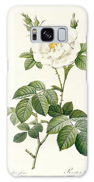 Botanical Garden Galaxy Case - Rosa Alba Flore Pleno by Pierre Joseph Redoute