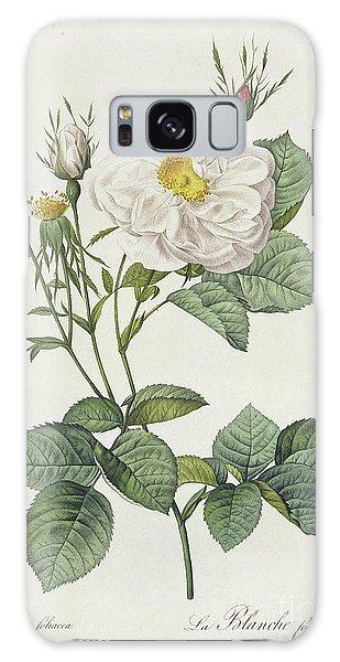 Plants Galaxy Case - Rosa Alba Foliacea by Pierre Joseph Redoute