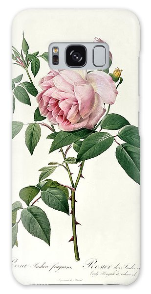 Plants Galaxy Case - Rosa Chinensis And Rosa Gigantea by Joseph Pierre Redoute