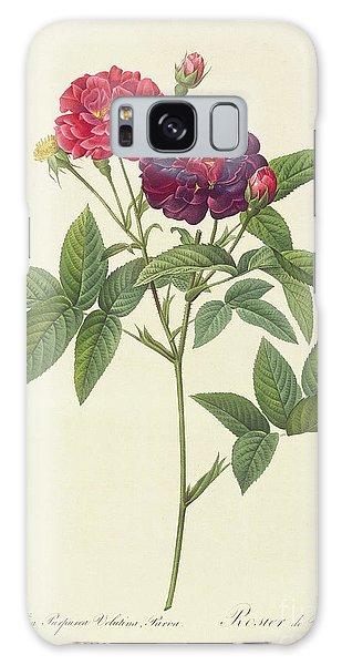 Botanical Garden Galaxy Case - Rosa Gallica Purpurea Velutina by Pierre Joseph Redoute