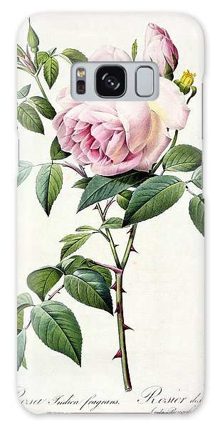 Plants Galaxy Case - Rosa Indica Fragrans by Pierre Joseph Redoute
