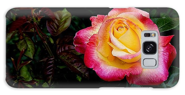 Rose 1 Galaxy Case