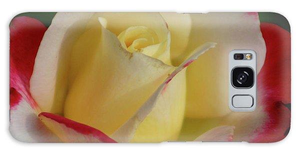 Rose 3913 Galaxy Case