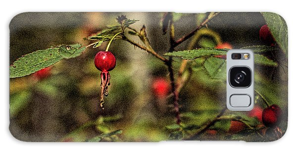 Galaxy Case featuring the photograph Rose Hips 2016 by Fred Denner