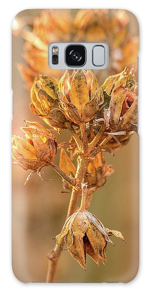 Rose Of Sharon In Winter Galaxy Case
