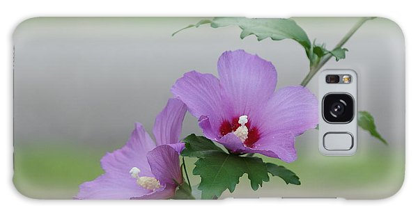 Rose Of Sharon Pair Galaxy Case