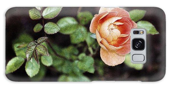 Rose Galaxy Case by Stefan Nielsen