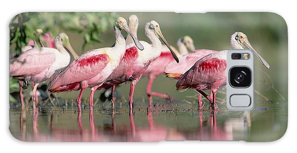 Galaxy Case featuring the photograph Roseate Spoonbill Flock Wading In Pond by Tim Fitzharris
