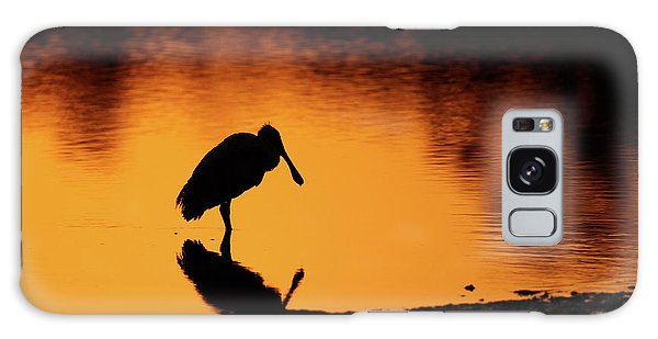 Roseate Spoonbill Silhouette Galaxy Case