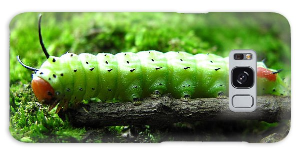 Rosy Maple Moth Caterpillar Galaxy Case