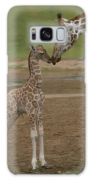 Galaxy Case featuring the photograph Rothschild Giraffe Giraffa by San Diego Zoo