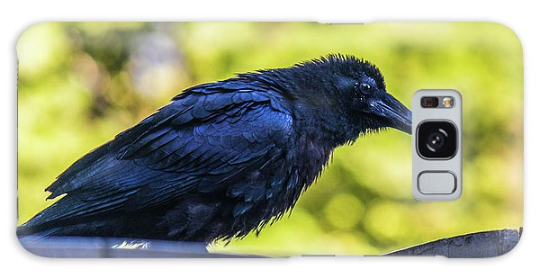 Galaxy Case featuring the photograph Rough Crow  by Jonny D