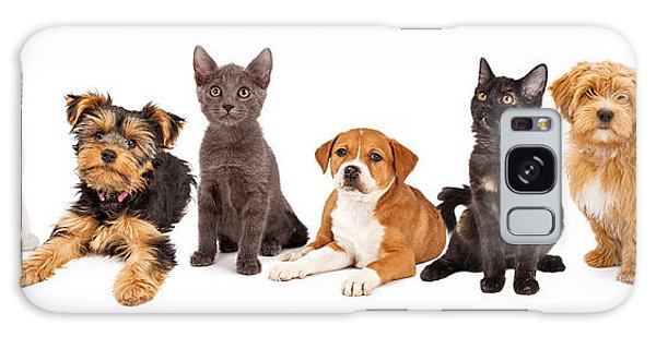 Row Of Puppies And Kittens Galaxy Case