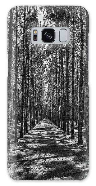Rows Of Pines Vertical Galaxy Case