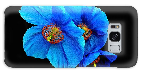 Royal Blue Poppies Galaxy Case by Jeannie Rhode