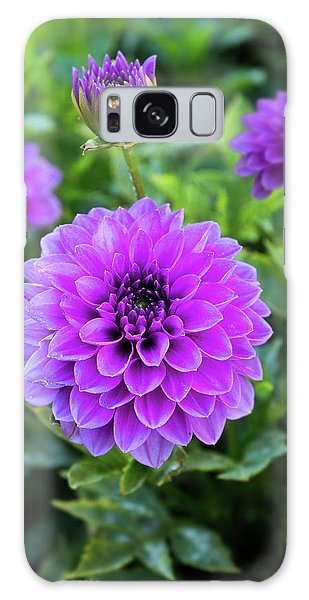 Royal Dahlia Delight Galaxy Case