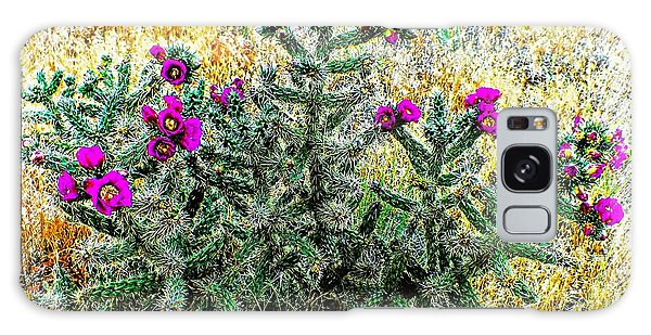 Royal Gorge Cactus With Flowers Galaxy Case by Joseph Hendrix