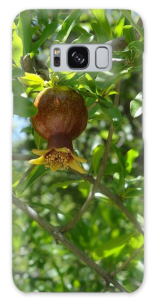 Royal Onion Pomegranate Galaxy Case