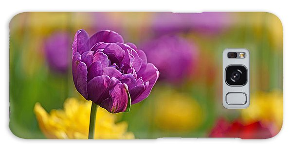 Royal Tulips Galaxy Case